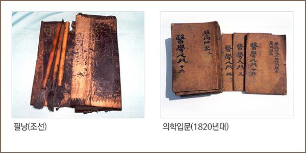 필낭(조선), 의학입문(1820년대)
